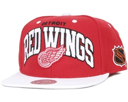 Detroit Red Wings Team Arch - Mitchell & Ness