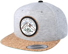 Parkdale Grey Snapback - Picture