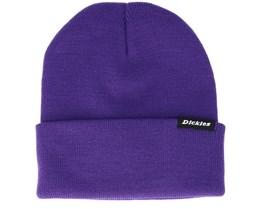 Alaska Purple Beanie - Dickies
