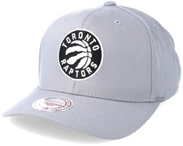 Toronto Raptors Gull Grey 110 Grey Snapback - Mitchell & Ness