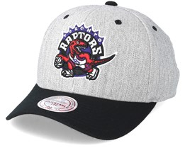 Toronto Raptors Team Logo 2-Tone 110 Grey/Black Adjustable - Mitchell & Ness