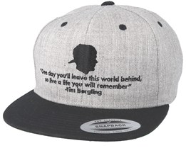 One Day Grey Snapback - Iconic